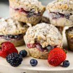 Frozen Oatmeal Cups – Slender Kitchen